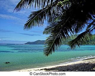 島, 浜, mahe