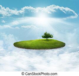 島, 浮く, 木