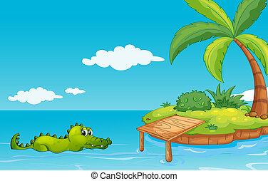 島, 行く, ワニ