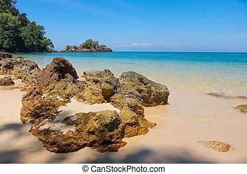 島, 風景, 典型的, トロピカル