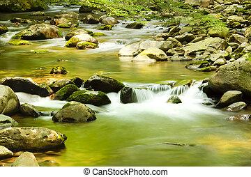 川, によって, ∥, 森林, そして, コケむした, 玉石