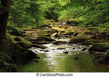 川, 森林