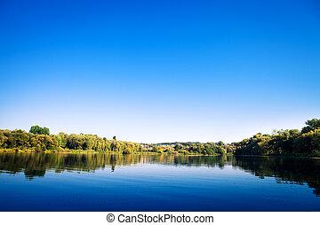 川, 森林, 絵のよう