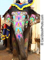州, jaipur, elephant., インド, rajasthan.