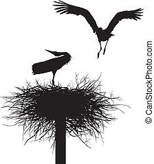 巣, こうのとり
