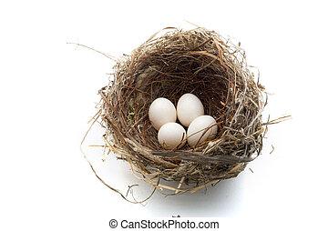巣, そして, 卵