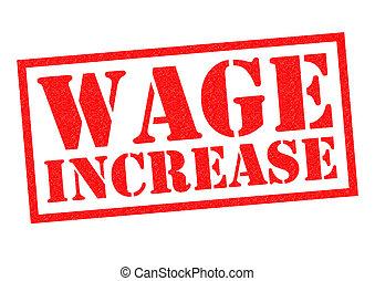 工資, 增加