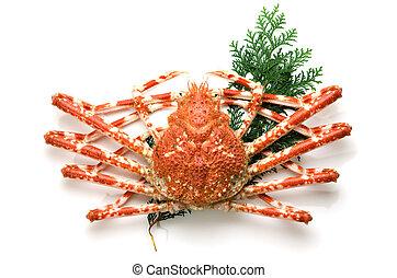 巨人, 螃蟹