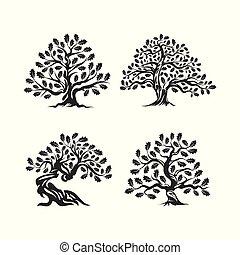 巨大, シルエット, 木, オーク, 隔離された, バックグラウンド。, 神聖, ロゴ, 白