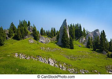 巨大, 岩, 緑の採草地, 山