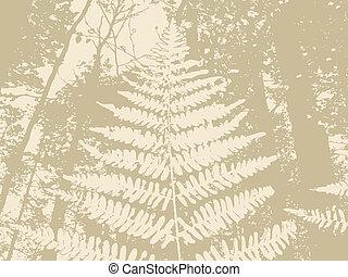 布朗, 侧面影象, 描述, 厥类植物, 背景, 矢量