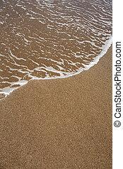 布朗, 清楚, 热带的水, 沙子海滩