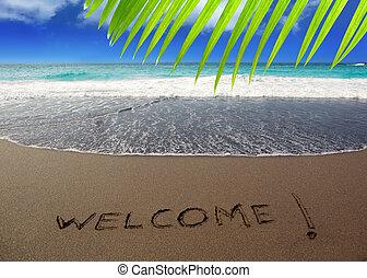 布朗, 词汇, 欢迎, 沙子, 写, 海滩