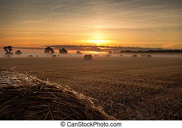干し草のベール, ∥において∥, 日の出, 風景