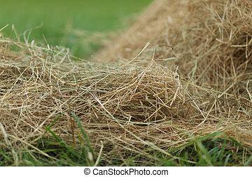 干し草, の上, 終わり