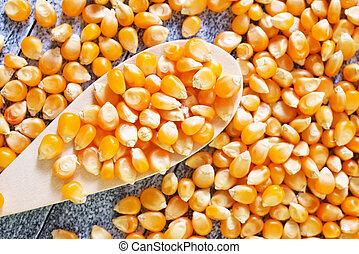 干燥, 玉米