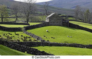 干燥, 王国, 石头, 联合起来, 老, 农场, 约克郡, 墙壁, 荒野, 小山, 北方, 谷仓, 腺