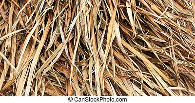 干草, 槭樹葉