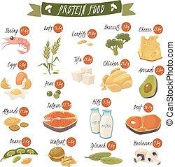 平ら, セット, アイコン, 食物, 豊富, タンパク質