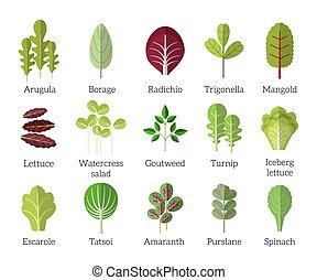 平ら, セット, サラダ, ingredients., アイコン, 野菜, ベクトル, 葉が多い