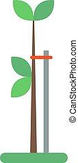 平ら, 植物, 実生植物, 土壌, 若い, 緑, vector., 成長する