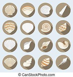 平ら, 殻, セット, 海, アイコン