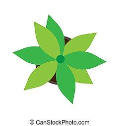 平ら, houseplant, 上, フラワーポット, 隔離された, 成長, 緑, vector., 白, 光景, flora., アイコン