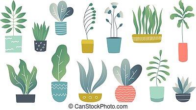 平ら, houseplants., 屋内, いたずら書き, 庭, 植物, かわいい, 内部, succulents,...