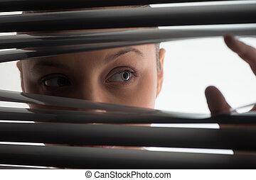年輕婦女, 偷看, 透過, 關閉, 窗帘, 或者, shutters., 婦女, 觀察, 透過, jalousie,...