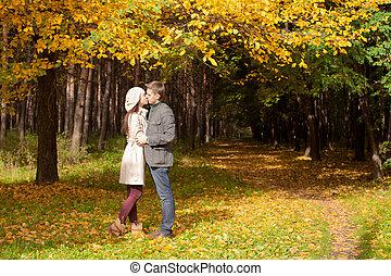 年轻夫妇, 亲吻, 在中, 秋季, 公园, 在上, a, 阳光充足, 落下天