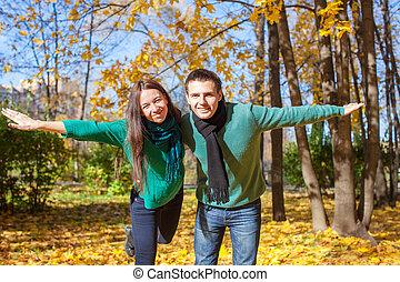 年轻夫妇, 在中, 秋季, 公园, 在上, a, 阳光充足, 落下天