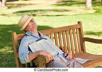 年長 人, 睡眠, ベンチで