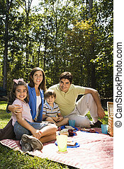 幸せな家族, picnic.