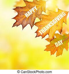 幸せ, 感謝祭, 日