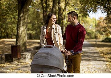 幸せ, 歩くこと, 公園, 親, 赤ん坊, 若い, 乗り物, 運転