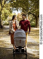 幸せ, 親, 歩くこと, 若い, 乗り物, 運転, 公園, 赤ん坊