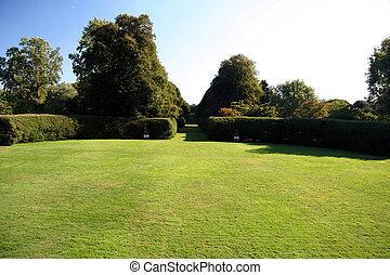 広く, 草, 庭, 背中, 開いた