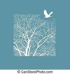 広場, 木の 冬