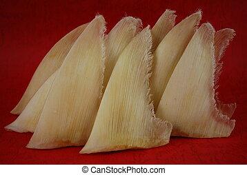 店, サメ, 中国語, ひれ, 伝統的である, 乾かされた