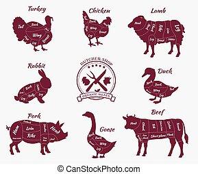 店, vew, セット, 動物, 肉屋, 概略図