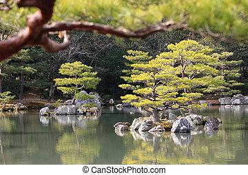 庭の日本人, 有名, kinkakuji