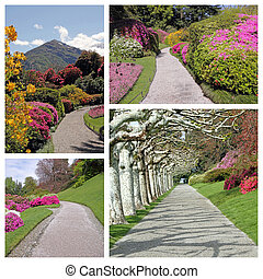 庭, アリー, コラージュ, -, イメージ, から, elagant, 公園, 中に, 歴史的, vil