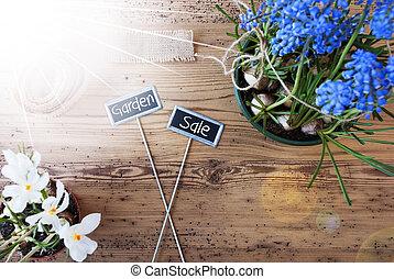 庭, テキスト, 日当たりが良い, セール, 花, サイン