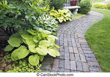 庭, ペーバー, 道, ∥で∥, 植物, そして, 草