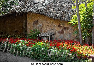 庭, 小さい, アジア人, 壁, 家