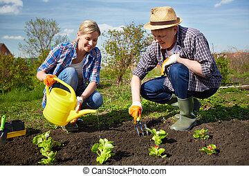 庭, 農夫
