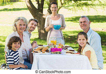 延長, 昼食を食べる, 家族, 芝生