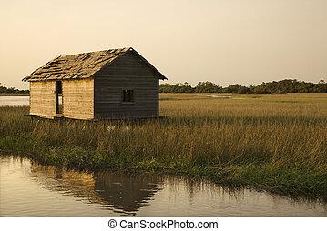 建物, 中に, 湿地, wetland.