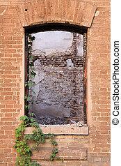 建物, 植物, 古い, ぶら下がる, 背中, 台無しにされる, 分解しなさい, 窓, 壁