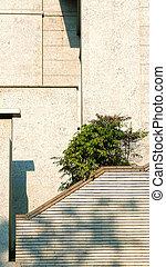 建物, 現代, 外面